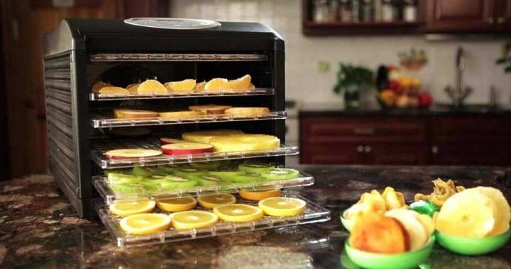 Best Food Dehydrator Features
